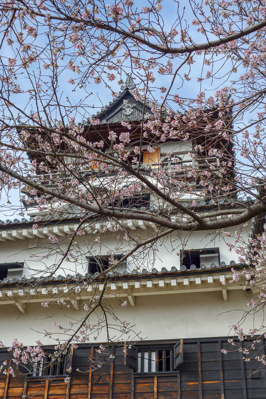 news - Next up in the region of Nagoya was a day trip to Inuyama, near Gifu. I actually spent a few days in Gifu on a more recent trip to Japan. Inuyama is a
