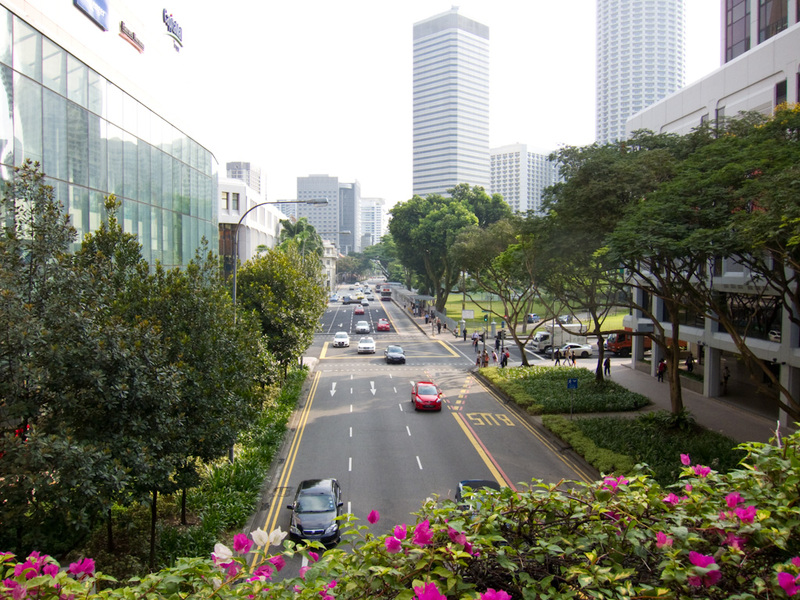 Singapore-Orchard Road-Geylang Road - The view near my hotel, very wide clean streets with flowers everywhere.