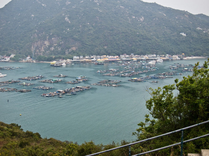 Hong Kong-Hiking-Ferry-Lamma Island - After walking over and around the mountain you get to this view of the floating village of Sok Kwu Wan, its fairly impressive looking, different to an