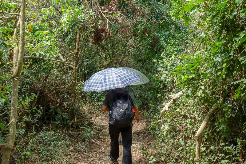 Taiwan-Kaohsiung-Hiking-Shoushan-Chaishan - Except more grandmas were walking slowly with terrifying umbrellas to stop anyone getting past.