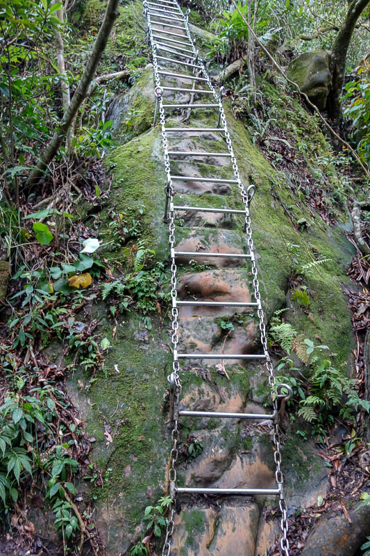 Taiwan-Shiding-Hiking-Huangdidian - Then the ladders started. Taiwan has an abundance of stainless steel. The USA has banned the import of Taiwanese steel this week due to trade dumping
