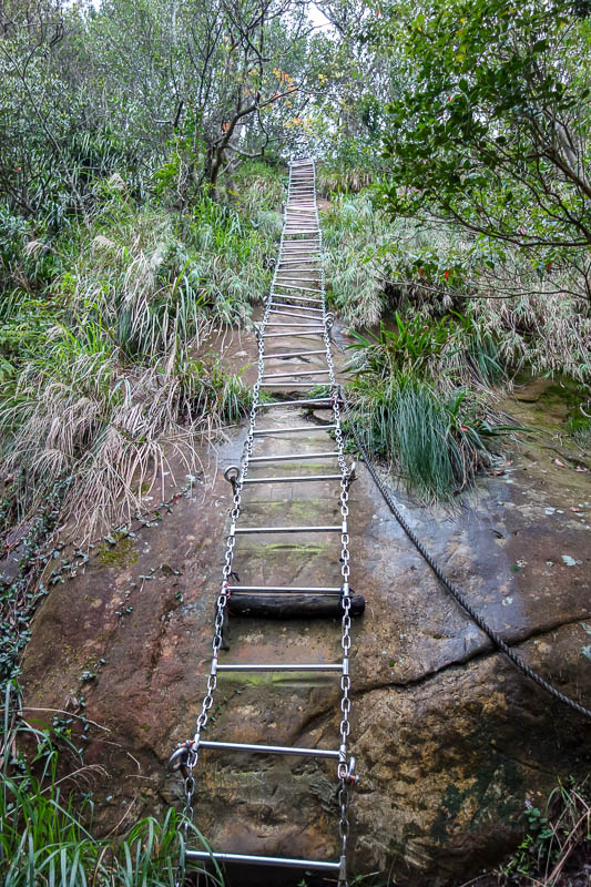 Taiwan-Shiding-Hiking-Huangdidian - I was super impressed by the long ladders. The longest was over 100 steps. I could have taken a lot more ladder photos but I had to put my camera away