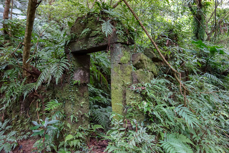 Taiwan-Shiding-Hiking-Huangdidian - On the way back down there were many such moss covered ruins.