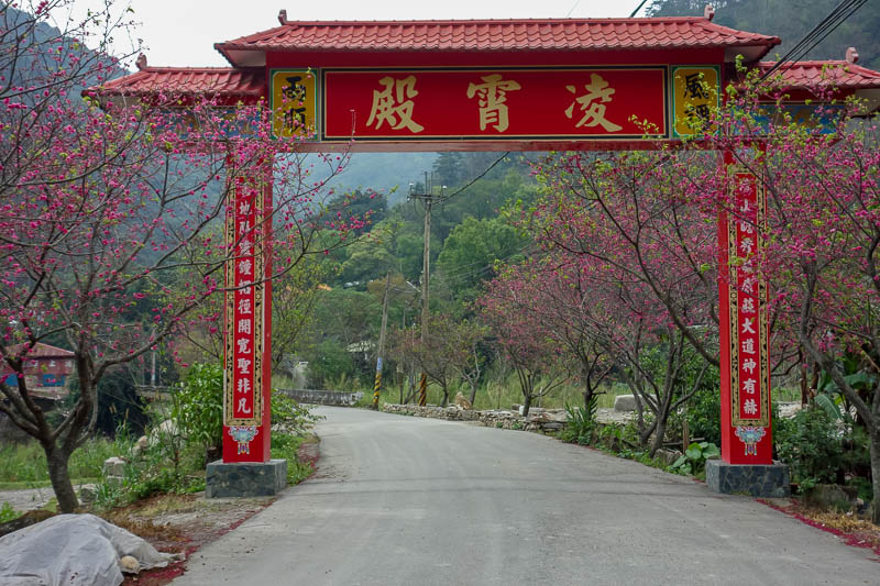Taiwan-Puli-Hiking-Temple - I am finally back to civilization! Enjoy these pink blossoms and a gate.