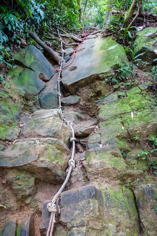 Taiwan-Taipei-Hiking-Wuliaojian - Immediately, ropes, up a cliff. Excellent.