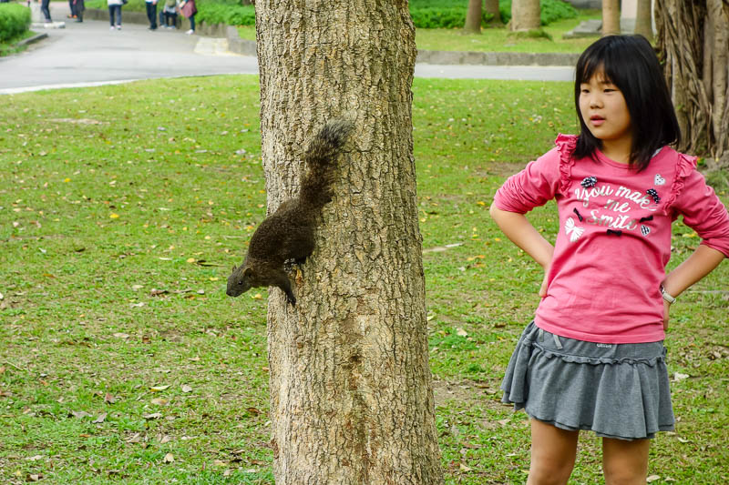 Taiwan-Taipei-Taoyuan-Airport-Lounge-Beef - A girl and her pet squirrel. These things are all over the park, they do not appear to be afraid of humans, however this human (me) is afraid of squir